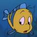 Flounder bebé