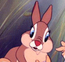 Señora conejo
