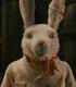 Conejo Chef