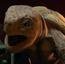 Turtle 2 KSY