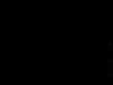 IDS International Dubbing Services