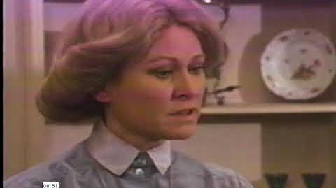 Heidi en la ciudad 1978 latino