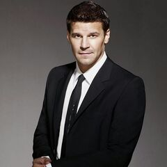 Ag. Seeley Booth en la serie <a href=