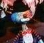 Clown 2 R&FCIJ