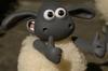 Timmy cute