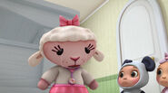 Baby lambie with tears in her eyes 2