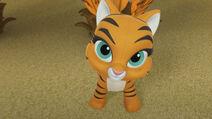 Hidden Tiger 055