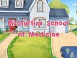 McStuffins School of Medicine