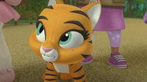Hidden Tiger 038