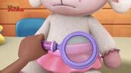 Close up shot lambie's tutu