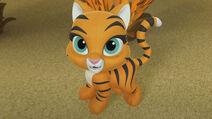 Hidden Tiger 056