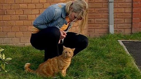 The Uncooperative Cat - Fear Her - Doctor Who Confidential