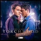 Torchwood broken