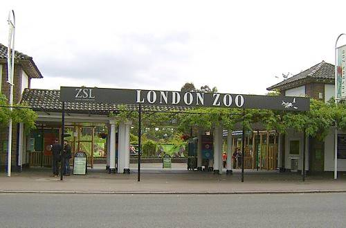File:London-zoo-1.jpg