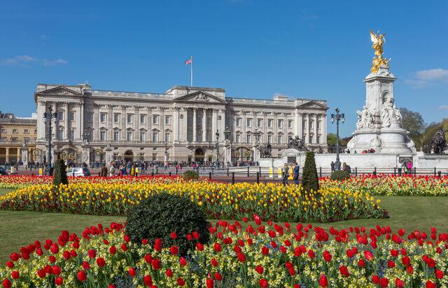 File:Buckingham Palace from gardens, London, UK - Diliff-1.jpg
