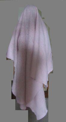 Blanketman