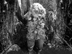 Varga-plant-man