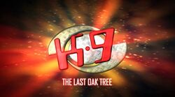 E14-The last oak tree-DVDRip-Eng Rus.mkv snapshot 00.32 -2014.11.29 00.05.54-