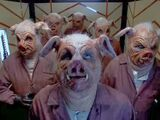 Свинорабы