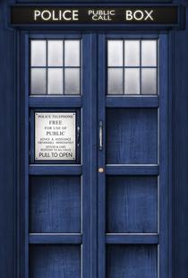 Tardis-door1