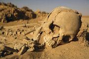 Sand skeleton