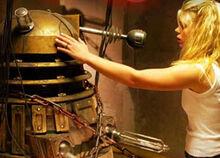 Dalek-rose
