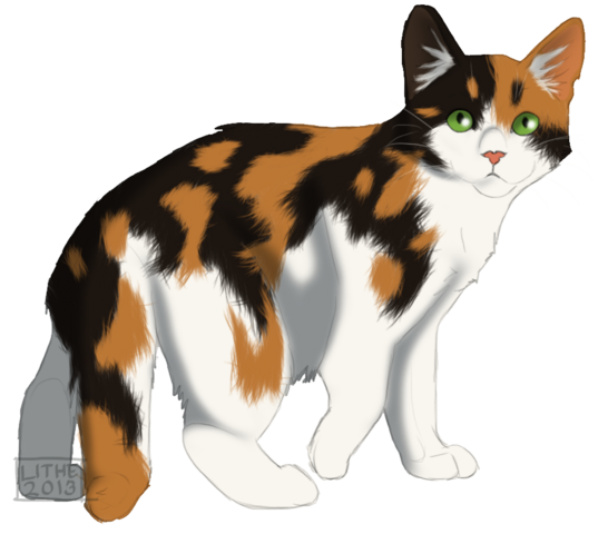 File:Sweetpaw tc by lithestep-d5wmi4w.png