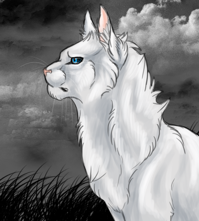 File:Cloudtail.png