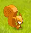 Clairvoyant Squirrel