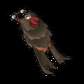 Black Rat Cape