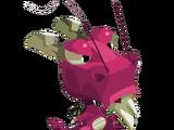 Pink Dragoone