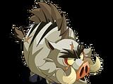 Aggressive Boar