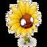 Wilde Sonnenblume
