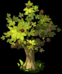 Chestnut tree Dofus FANDOM powered by Wikia