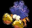 Crustocana Kuraçal
