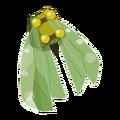 Green Scaracape