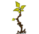 Healing Branch