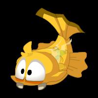 Kittenfish (fish)