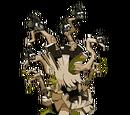 Ancestral Treechnid