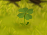 Five-Leaf Clover (plant)