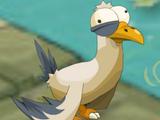 Sacred Seagull