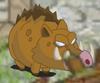 Plain Boar (NPC)