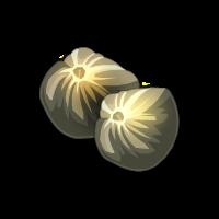 Wild Sunflower Seed