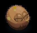 Kokonkaska
