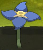 Kleine blaue Blume