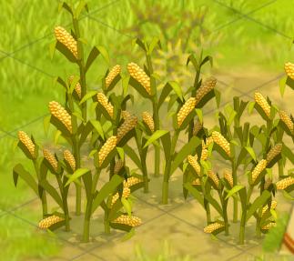 Corn Plant corn (plant) | dofus | fandom poweredwikia