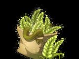 Sack of Barley