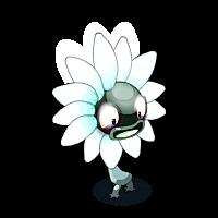 Small Wild Sunflower