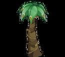 Palmiflor Maliboo