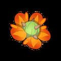 Castupod Flower